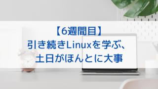 【6週間目】引き続きLinuxを学ぶ、土日がほんとに大事